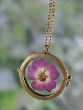 Medaillonkette mit echter Hagebuttenblüte