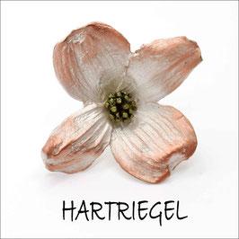 *Hartriegel-Brosche