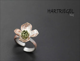 *Hartriegel-Ring
