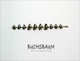 *Buchs-Armband
