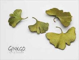 *Ginkgo - Brosche