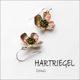 *Hartriegel-Ohrschmuck