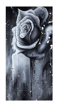 Rose Kunstdruck