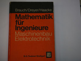 Brauch/Dreyer/Haacke - Mathematik für Ingenieure