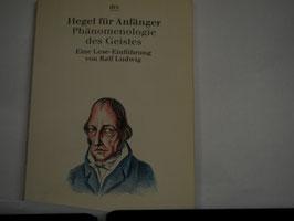 Hegel für Anfänger - Phänomenologie des Geistes