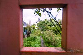Île aux moines IAM /8782