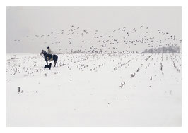 Ritt im Schnee