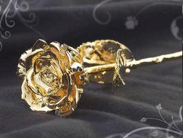 Echt gewachsene Rose und dann 24 Karat vergoldet!