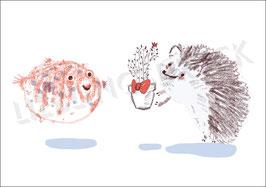 Freunde – Igel und Fisch