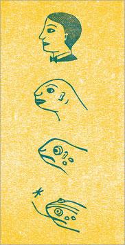 Evolution — Vom Mann zum Frosch
