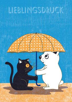 Regenfreundschaft