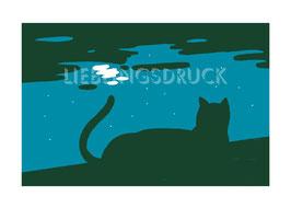 Katze im Mondschein