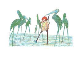 Stelzenvögel