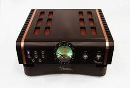 Dagostino Momentum Integrated Amplifier