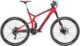 Bike ausleihen Pauschalbetrag für die gesamte Zeit // Bike rent overall price for the whole time