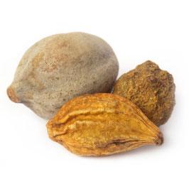 Triphala Extrakt - 40% Tannine