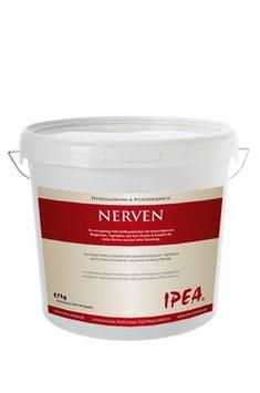 IPEA Nerven