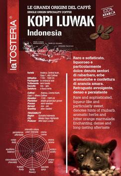 Indonesia Kopi Luwak