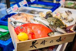 栄正特選鮮魚セット