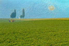 Springtime in the Fields -19-
