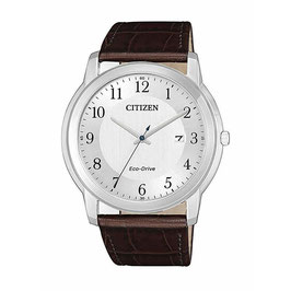 CITIZEN Evergreen  AW1211-12A