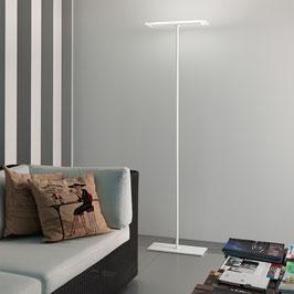 Dublight - LED Stehleuchte - Linea Light