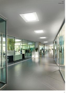 Dublight - LED Deckenleuchten - Linea Light