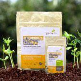 Mykorrhiza Soluble - zur Verbesserung des Wurzelwachstums | 90 g