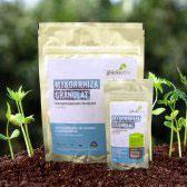 Mykorrhiza Granulat - zur Verbesserung des Wurzelwachstums | 180 g