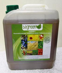 begreen - Platinium Koncentrat