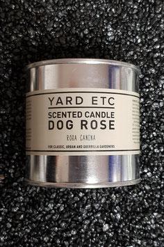 Duftkerze Dog Rose