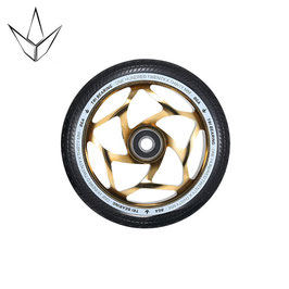 BLUNT TRI BEARING Gold/black