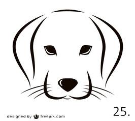 Hund Nr. 25