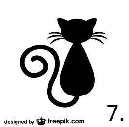 Katze Nr. 7