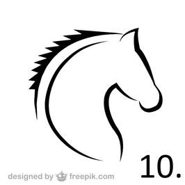 Pferd Nr. 10