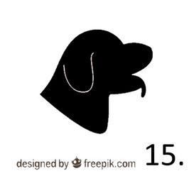Hund Nr. 15
