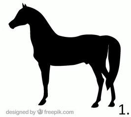 Pferd Nr. 1