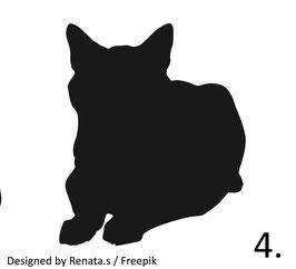 Katze Nr. 4