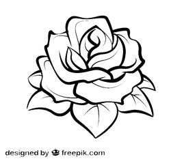 Blume Nr. 1