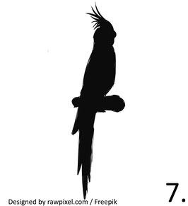 Vogel 7