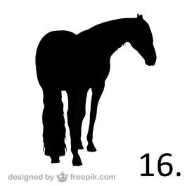 Pferd Nr. 16