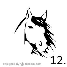 Pferd Nr. 12