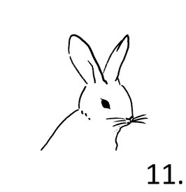 Hase Nr. 11