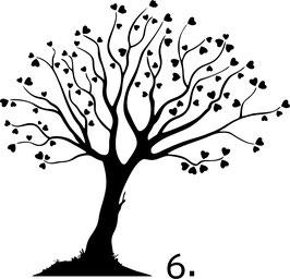 Baum. 6 (6.2)