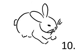 Hase Nr. 10