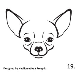 Hund Nr. 19.