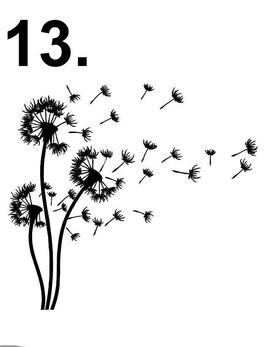 Sternenkinder 13