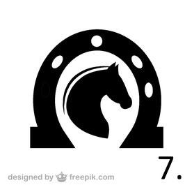 Pferd Nr. 7