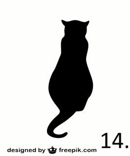 Katze Nr. 14