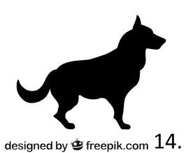 Hund Nr. 14